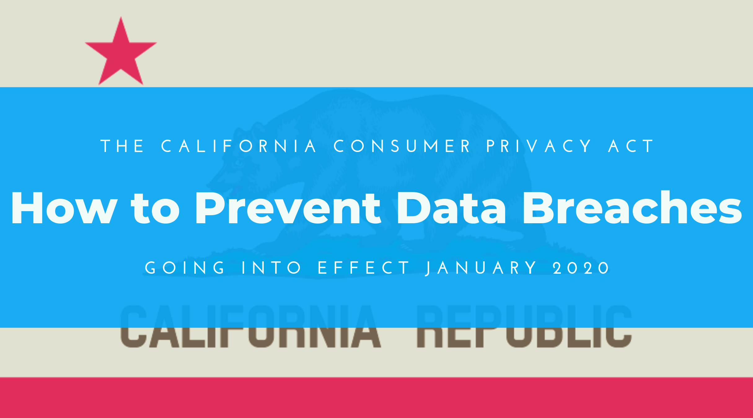 The California Consumer Privacy Act of 2018 (CCPA):  How to Prevent Data Breaches
